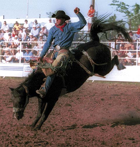 http://www.grandcanyonexcursions.com/images/Bryce%20rodeo%207.jpg